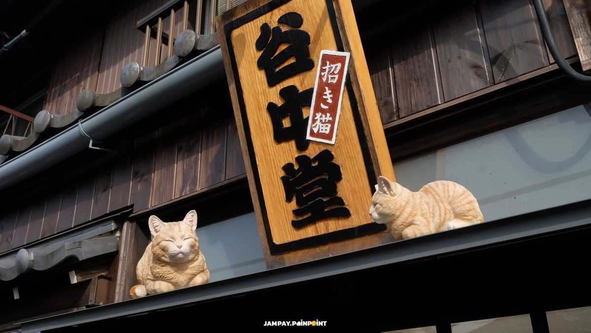 Lucky Cat in Yanaka, yanaka, ยานากะ, Solo Travel